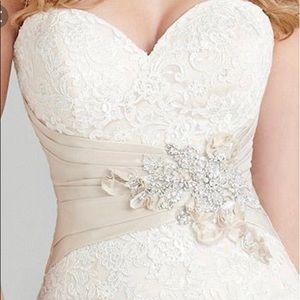 Beautiful Allure Wedding Dress